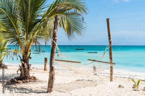 Poster Zanzibar beautiful view of palm and hammock on Zanzibar beach with blue sky and ocean on the background
