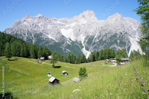 Foto op Canvas Olijf Alpen