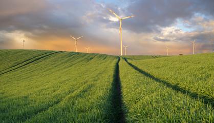 Turbiny wiatrowe w polu wiosennym