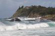 Australien Forster 23