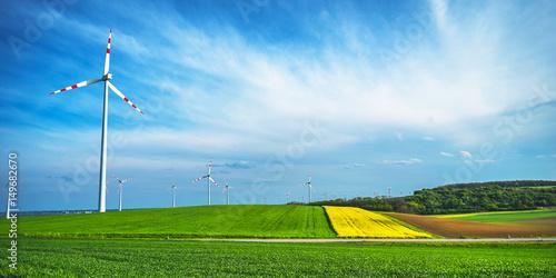 Zdjęcie XXL Rzepak i windwheels z niebieskim niebem