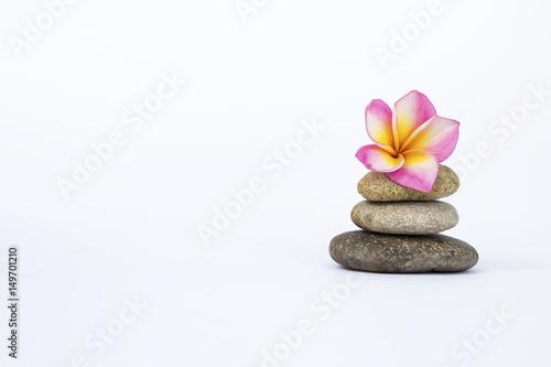 Foto op Canvas Zen Plumeria flower on Zen stone isolate on white background, spa concept background
