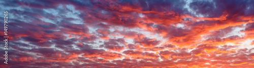 Fototapeta Panoramic view the blood red evening sky and amazing clouds. obraz