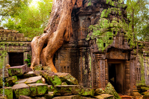 Poster Bedehuis Ta Prohm temple. Ancient Khmer architecture under the giant roots of a tree at Angkor Wat complex, Siem Reap, Cambodia.