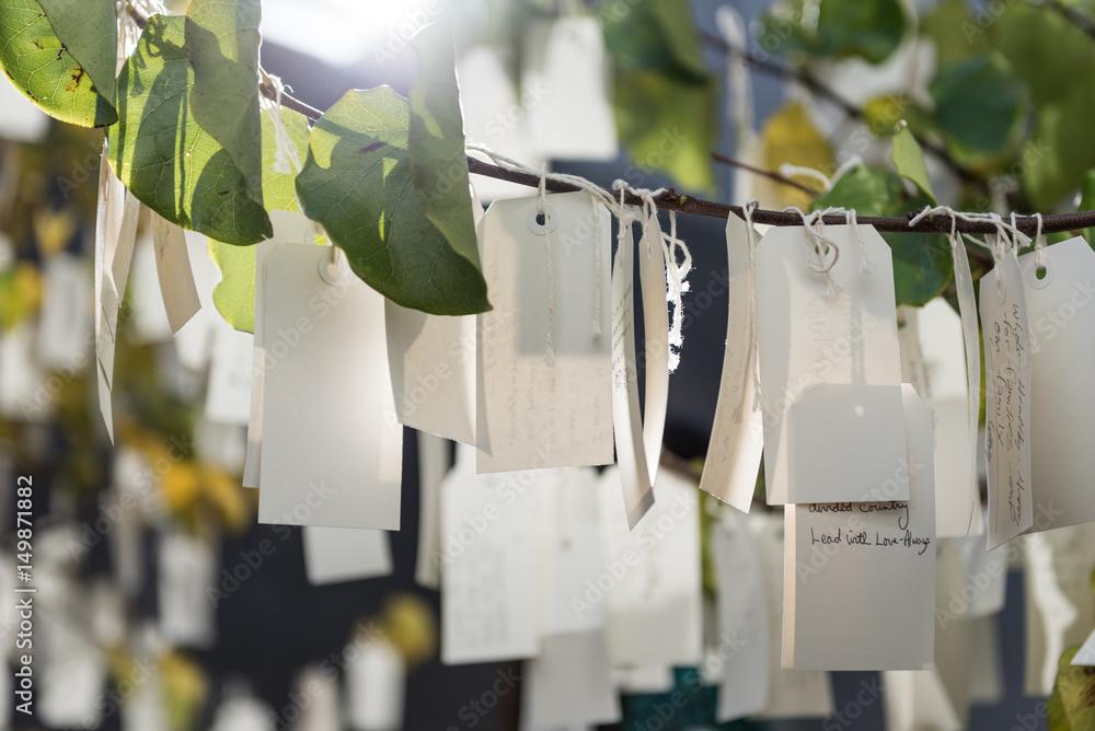 Fototapety, obrazy: Wishes on a tree