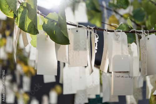 Photographie  Wishes on a tree