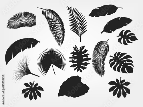 Silhouette tropical leaves set isolated, suitable for nature concept, summer and holiday Canvas Print
