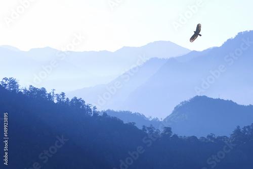 In de dag Eagle Mountain in morning fog