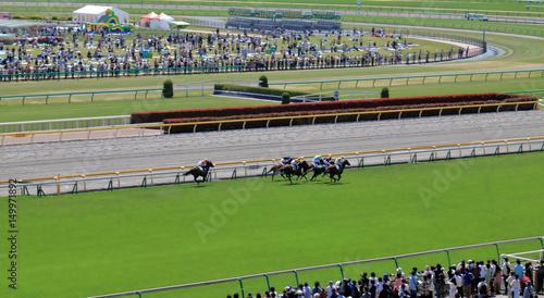Fotografie, Tablou 競馬