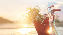Vintage Bicycle With Flowers In The Basket On Summer Sunset Rural Background
