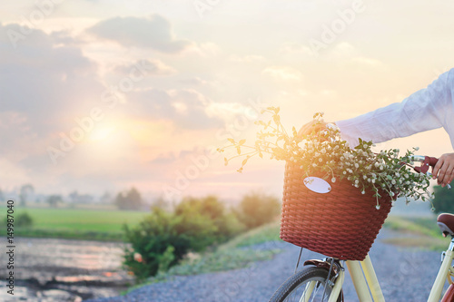 Türaufkleber Fahrrad Woman with vintage bicycle fulled of flowers in the basket on summer sunset rural background