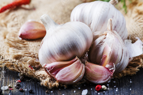 Fresh garlic, sea salt, pepper and spices, rustic style, selective focus Canvas Print