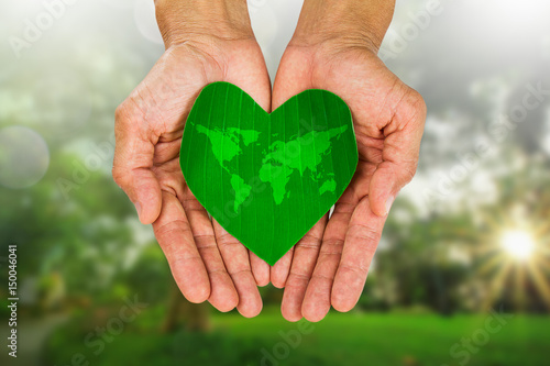 World Map On Hands.Man S Hands Holding Heart Shaped Green Leaf With World Map On
