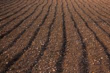 Ploughed Soil In A Field In Malta
