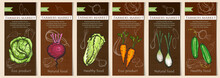 Sketch Vegetable Banners Set. Natural Vegetables Seeds In Packets Hand Drawn Vector. Vegetable Seeds Packets Template. Eco Vintage Foods
