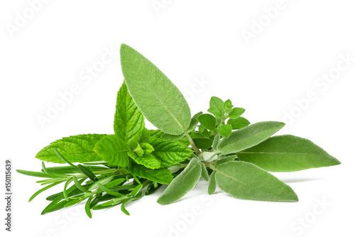 Fototapeta Fresh spices and herbs obraz
