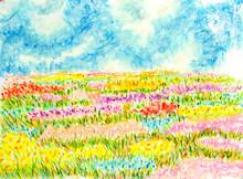 Flowers Field Landscape,oil Pa...