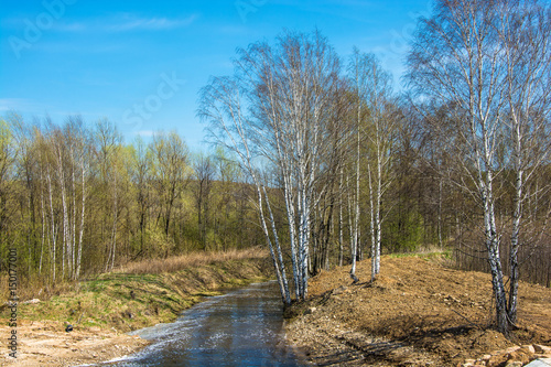 Foto op Aluminium Blauw Beautiful spring landscape with the river.