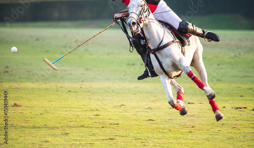 Action of polo player and horse. During the match
