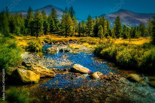 Cuadros en Lienzo The Tuolumne River runs through Yosemites Tuolumne Meadows