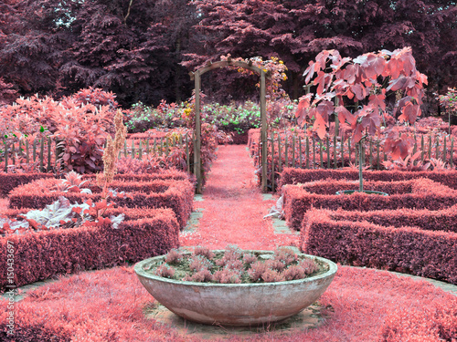 Leinwand Poster Garden with Infrared Effect