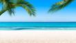 strandurlaub unter palmen