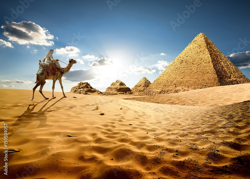 Foto op Plexiglas Kameel In sands of Egypt