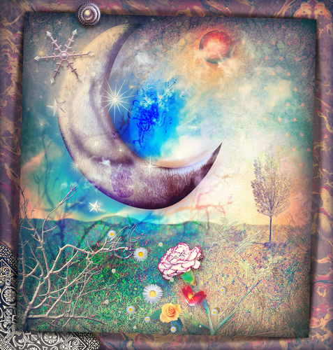 Photo sur Aluminium Imagination Fairytales landscape with silver moon,snow flakes and stars