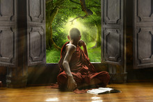 Buddhist Novice Looking Out Th...