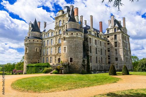 Foto op Plexiglas Kasteel mysterious castles of France - Chateau de Brissac ,Loire valley
