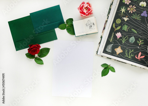 Mock-up with flower, botanical mockup
