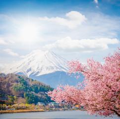 Fototapeta Mountain Fuji in spring ,Cherry blossom Sakura