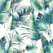 Summer Palm Tree And Banana Le...