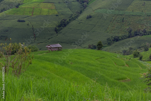 Deurstickers Groene Terraced Rice Field with Hut and Mountain Background , Chiang Mai in Thailand ,Blur Background