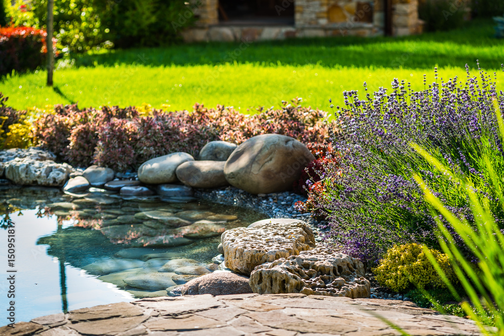 Fototapety, obrazy: beautiful landscaping with beautiful plants