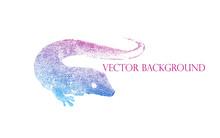 Lizard Gecko Vector Illustration. Figure Spots