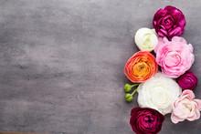Beautiful Colored Ranunculus F...