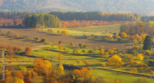Stickers pour portes Orange eclat Autumnal landscape with color trees
