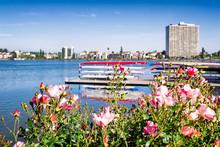 Oakland, California, Lake Merr...