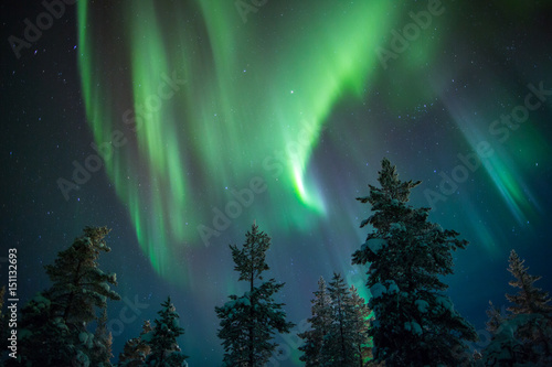 Aurora borealis (northern lights) in Lapland, Finland. Wallpaper Mural