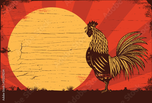 Obraz na plátně Drawing of rooster crowing at sunrise on a wooden sign, vector