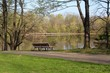 The empty bench overlooking the park lake.