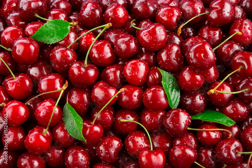 Cherry. Fresh organic berries with leaves macro. Fruit background