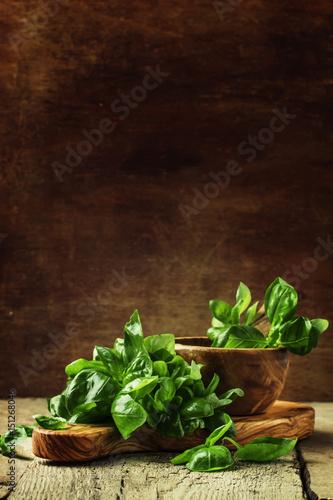 Carta da parati Green basil on a cutting board, rustic style, selective focus