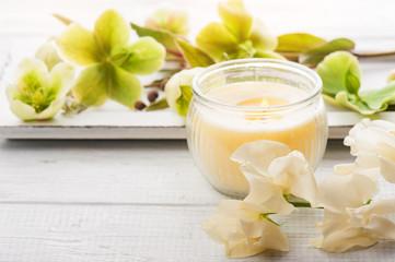 Obraz na płótnie Canvas green flowers and lit candle