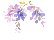 Watercolor Lilac Blue Flowers ...