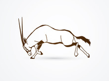 Oryx Jumping To Attack With Long Horn Outline Graphic Vector