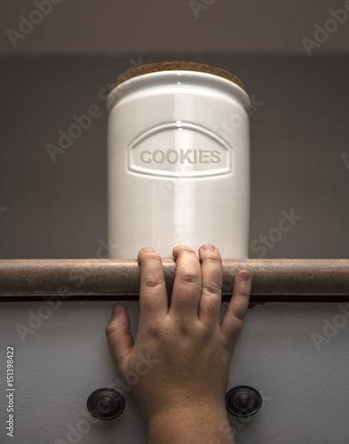 Canvas Print Cookie Jar