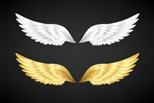 White And Gold Angel Wings