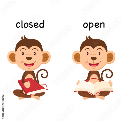 Opposite words closed and open vector Wallpaper Mural